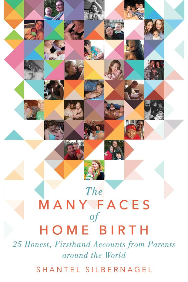 The Many Faces Of Home Birth Book Cover